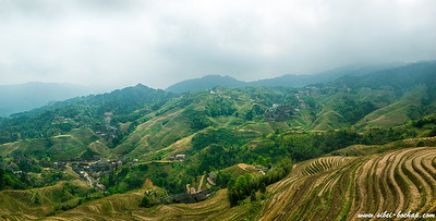 Longji Terraced Fields (龙脊梯田)