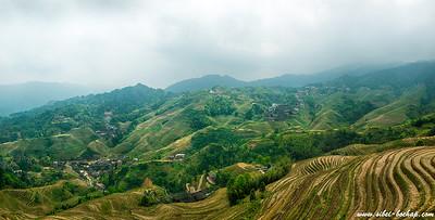 Longji Terraced Fields (龙脊梯田)