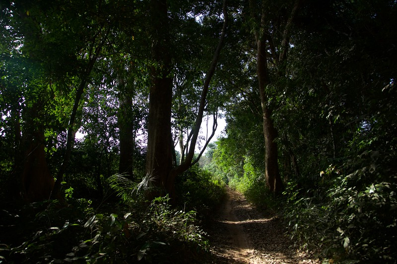 Cantanhez National Park
