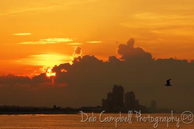 Sunrise Gulf Shores, Alabama