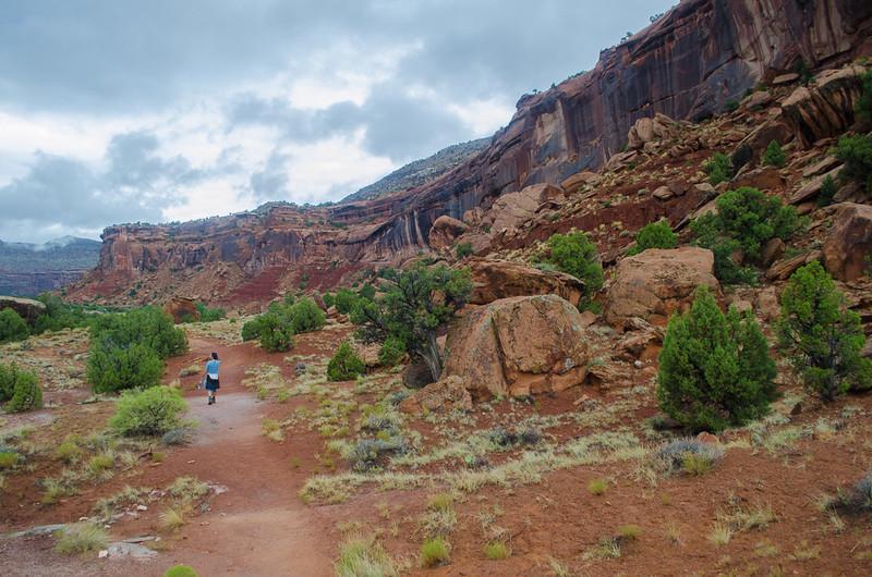 Dominguez Canyon