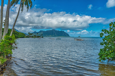 Along Kaneohe Bay
