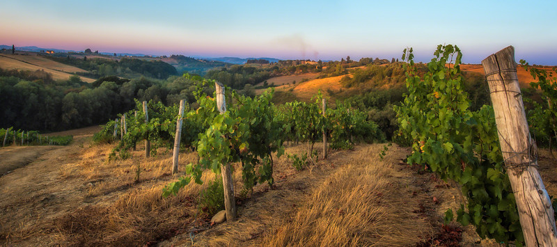 ~Tuscany Di-Vine~<br /> <br /> I could live a lifetime in this moment.