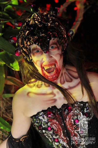 HHN 22: The Vampires