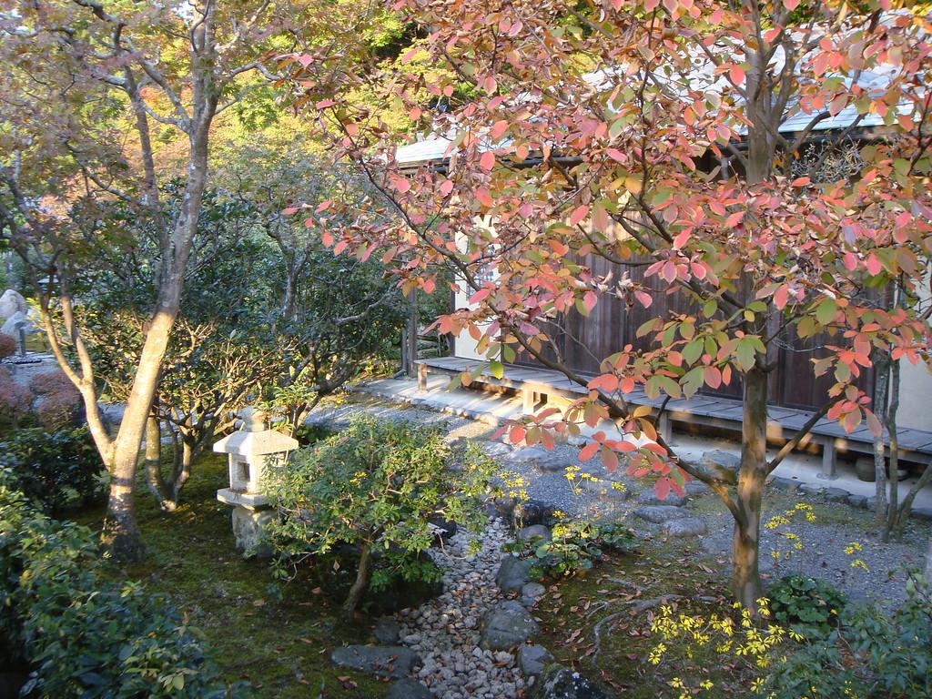 Autumn colours in Nanzenji gardens