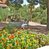 On the campus of the University of Arizona