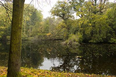 Beautiful Park Setting