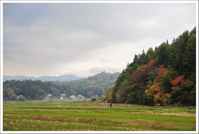 Some rice fields after the harvest.  It snows early in this area, so the harvest is early too.