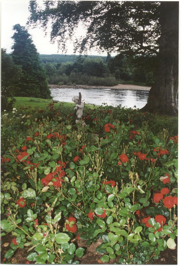 Scotland - Riverside Gardens