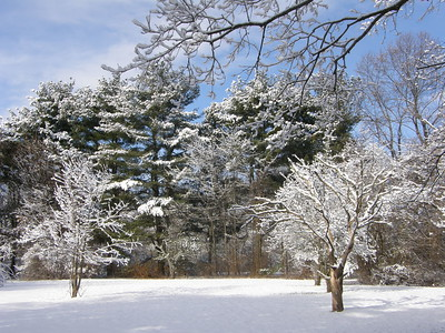 Winter at Ridgeside 1