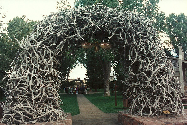 Jackson Hole park entrance