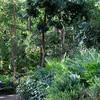 2011-03-08. Tarzans skottkärra. Hamburg [DEU]