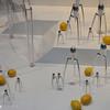 2011-03-07. Invasion från Mar... Italien! Lämna över era citroner! Hamburg [DEU]