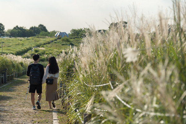 Haneul Park 2018