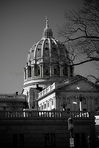 070169BW Capitol Dome