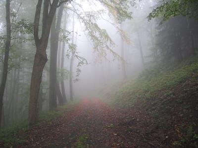 2e wandeling