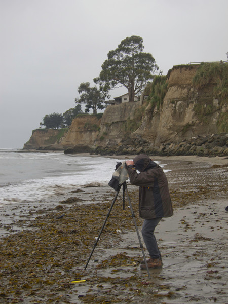 California Coast Workshop