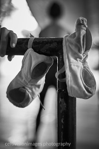 2015 ___hand barre shoes ballerina 1