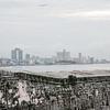 Havana-2310tnd