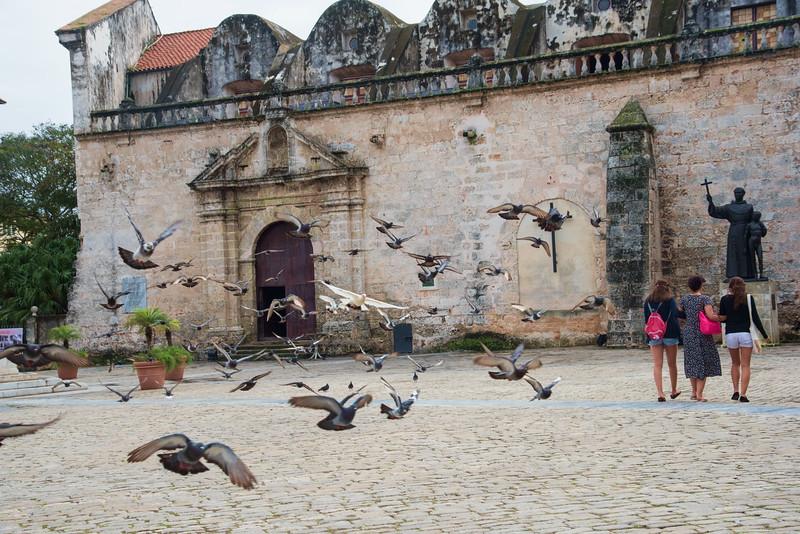 Havana-1397tnda
