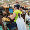 La Corona Cigar Factory tour, Havana, Cuba, June 2, 2016.