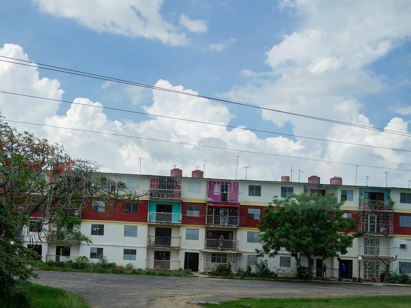 Jicotea, Road trip from Jucara to Havana, Cuba, June 10, 2016