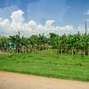 Near Jucara, Road trip from Havana to Jucara, Cuba, June 4, 2016