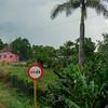 Near Majagua, Road trip from Jucara to Havana, Cuba, June 10, 2016