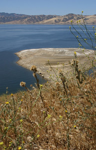 A view across the reservoir to the southeast. Vegetation is already very dry this season; could make for an even worse fire year than before. The water looks so peaceful now. Hard to imagine that big storms can raise 5-foot waves on the surface. And see those two teeeeeeny weeeeny white dots down on the peninsula?