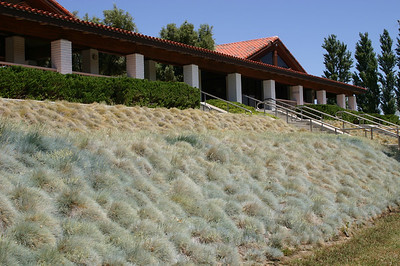 The only building on the site houses a museum and the usual cemetery facilities. We didn't look for the museum. The bunch grasses along the slope in front of the building also exuded calm.