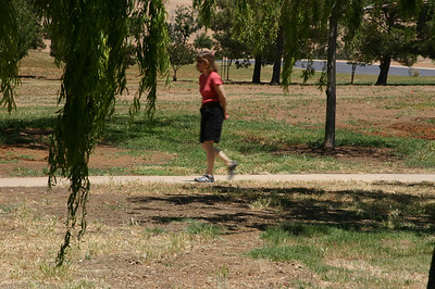 Linda strolling among the willows.