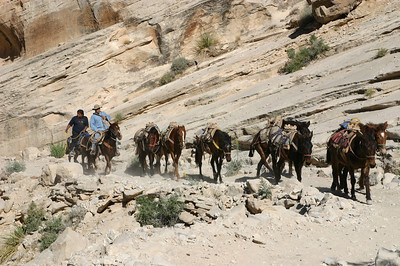 Everything in the village comes in one of three ways: By human power, by horse or mule, or by helicopter. That's it.