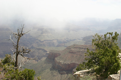 Then snow flurries would blow through and limit our views briefly. But every change made the canyon look like a different place!