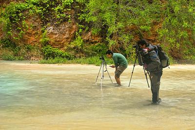 Photographers at work!