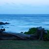 Hawaii '17 -  627