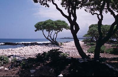 Hawaii 2003 and earlier