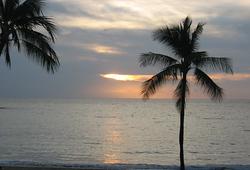 Hawaii wanders