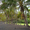 06/27/06: Punaluu Black Sands Beach