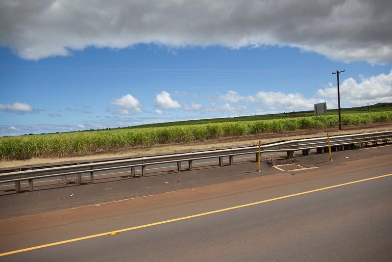 Hawaii_Jason_Zucco_Photography-55