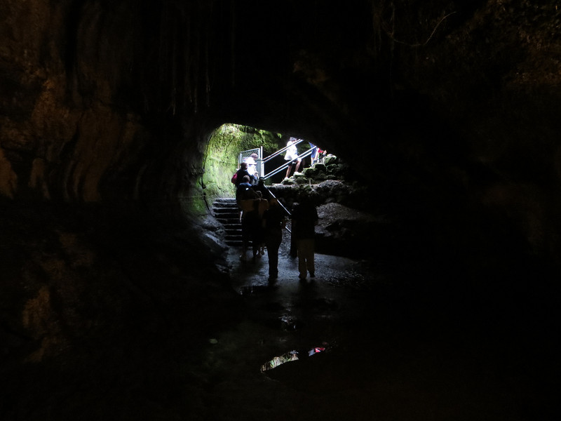 Apparently we only walked through half of the Thurston Lava Tube.  If you wish, you can continue on to the other part instead of going back up the stairs.  However, that section has no lights.  We all opted to return to the bus.