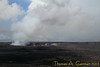 Hawai'i Volcano National Park. View of Halema'uma'u crater at Kilauea from Steaming Bluff.