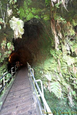 Thurston Lava Tube (Nāhuku).