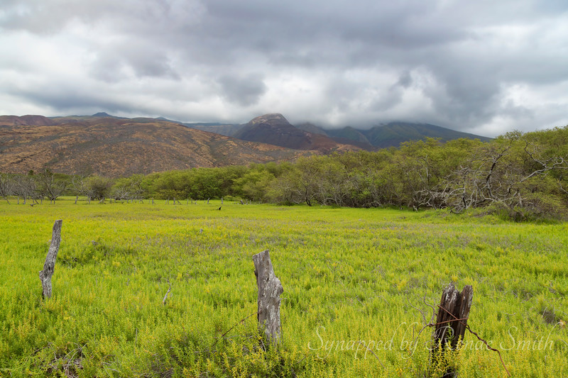 Central Molokai terrain leading up to the mountains in cloud cover.