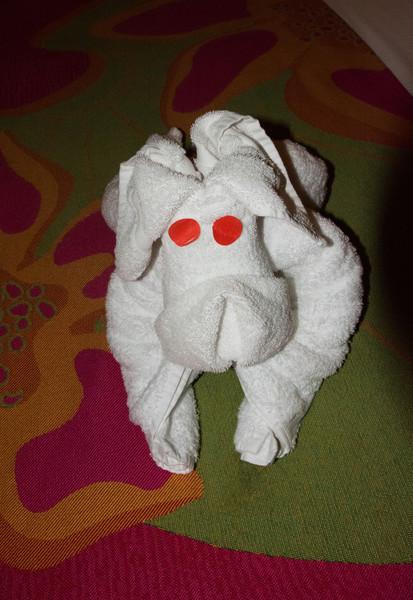 Day 2 puppy towel sculpture