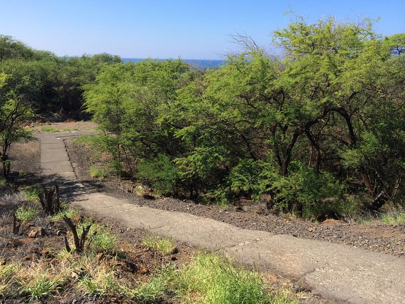 Hawaii-3708