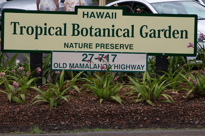 Hawaii-5983