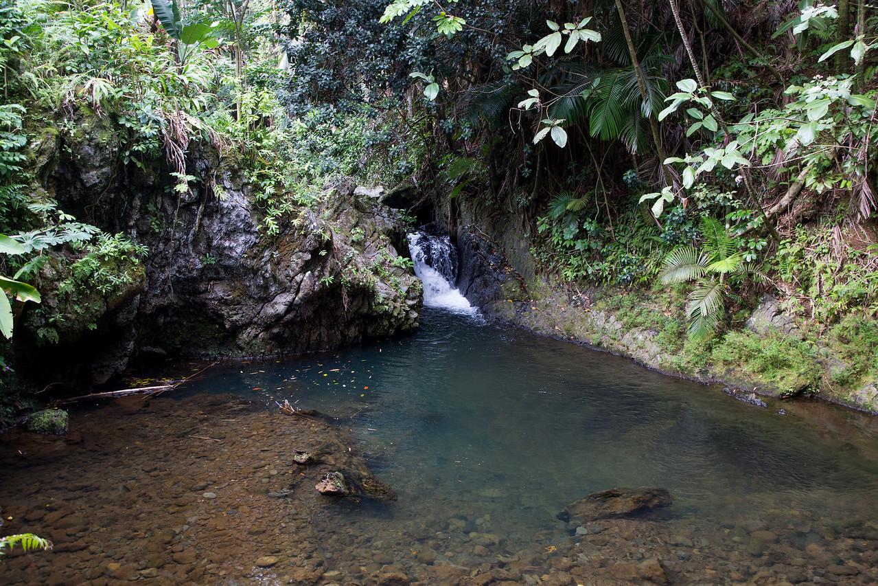 Hawaii-5929