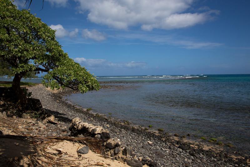 Hawaii-6113