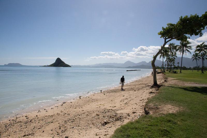 Hawaii-6099