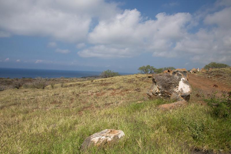 Hawaii-5883